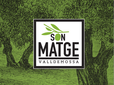 Oli Son Matge